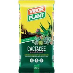 1 SACCO TERRA PER CACTUS lt 20 VIGORPLANT piante grasse idrocoltura succulente