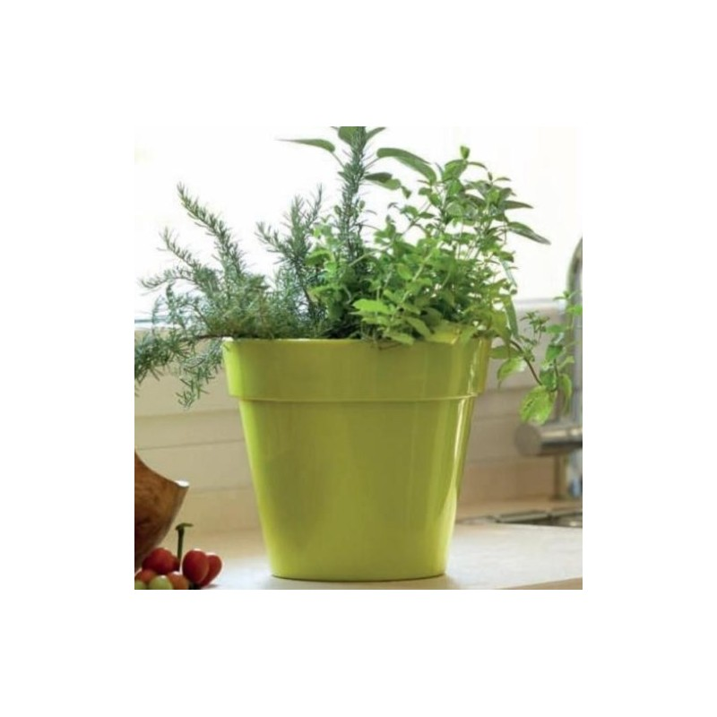 Nicoli vaso zeus gloss 60 vasi resina vaso arredamento for Vasi da arredo