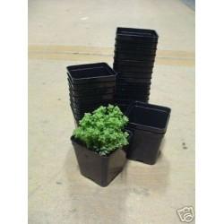 ARCA PANNELLO IN PLASTICA 24 POSTI PER VASO 7X7 COMPLETO ART660 fioriere vasi balcone giardino piante orto orti