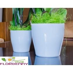 VECA COPRIVASO LIVING 25X25 IDROCOLTURA casa arredo giardino fiori piante orchidee cactacee