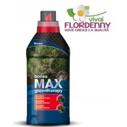 VALAGRO CYCAMAX 500 ml CONCIME CYCAS concimi fertilizzanti palma palme clorosi fiori